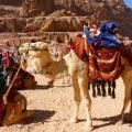 paysdescretes blog voyage destination vacances image